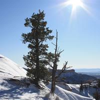 Zdrowy wypoczynek zimą